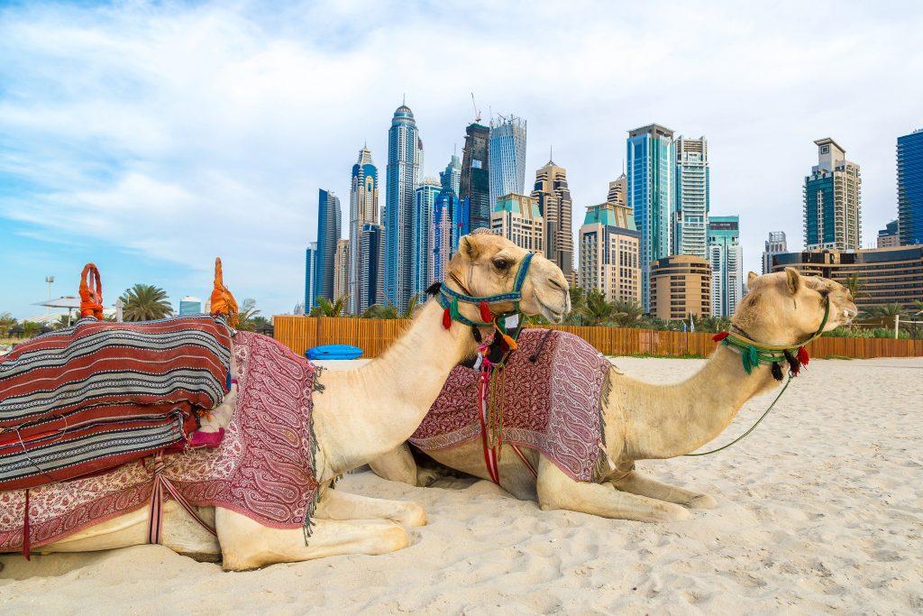 reisadvies Dubai
